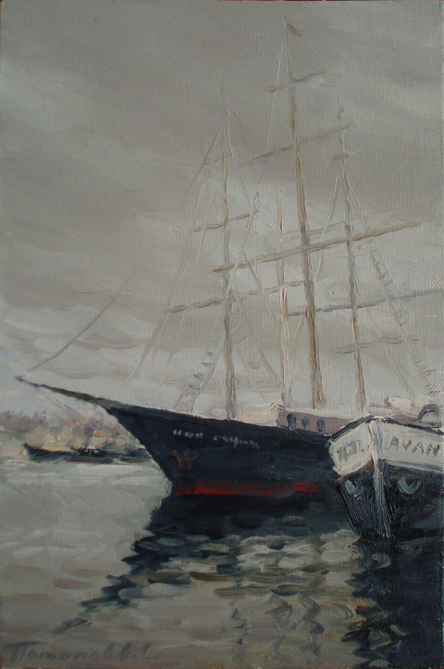 6. Голландия. Корабли. 2009. Х., м. 30х20